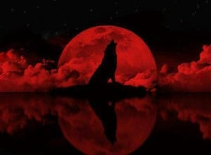 Blood-Tetrad-Moon-Werewolf