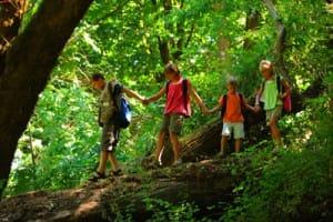 Zoom-sur-notre-circuit-famille-au-Costa Rica-enfants-jungle