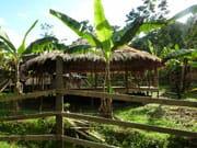hotels-originaux-et-excentriques-costa-rica-college-communaute-indigene-yorkin-bribri