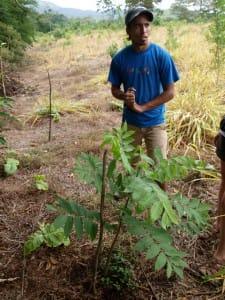 Costa-Rica-Decouverte-compense-reforestation