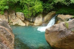 biodiversite-au-coeur-du-vivant-costa-rica-decouverte