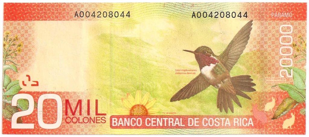 colibri-billet-20000-colons-costa-rica-decouverte