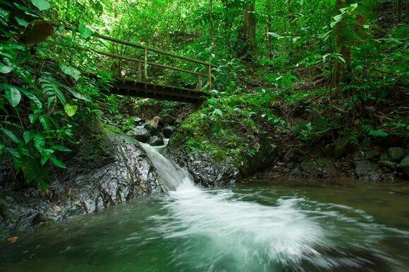 parc-national-piedras-blancas-cascade-playa-cativo