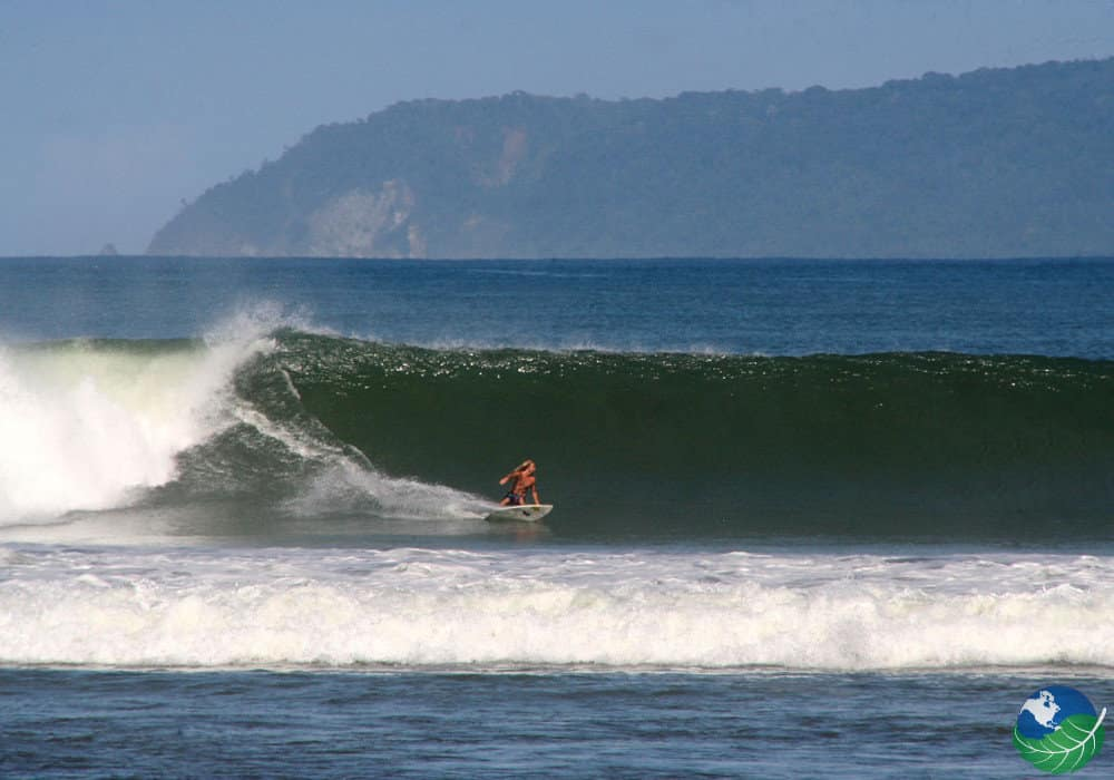 plage-pavones-surf-costa-rica-decouverte