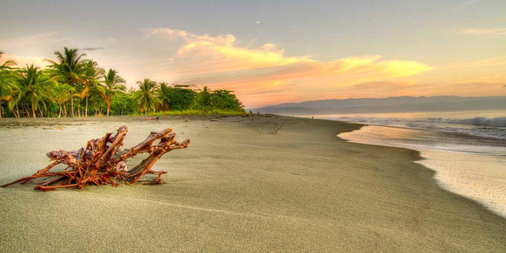 plage-platanares-puerto-jimenez-costa-rica-decouverte