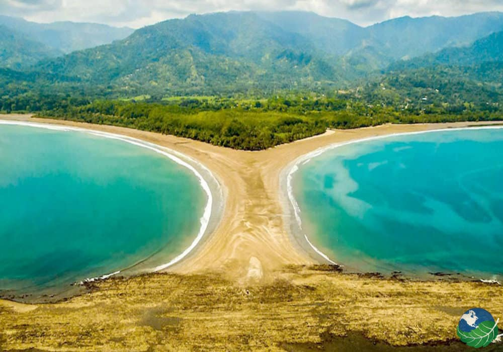 plage-uvita-costa-rica-decouverte