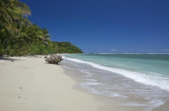 Cahuita, plage de puerto vargas