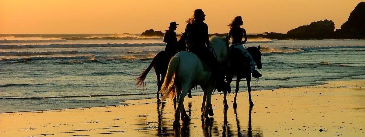 Balade a cheval sur la plage au Costa rica