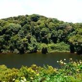 Volcan Barva lac