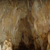 Barra  Honda grotte