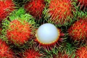 Rambutan - Mamon chino