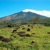 Volcan Miravalles