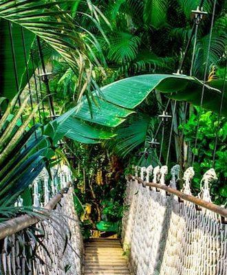 Plongée au coeur de la nature avec le circuit Oroverde. Le Costa Rica coté luxe.