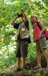 Enfant jungle famille
