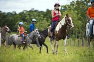 cinco-ceibas-cheval-costa-rica-decouverte