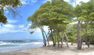 guanacaste-barrigona-costa-rica-decouverte