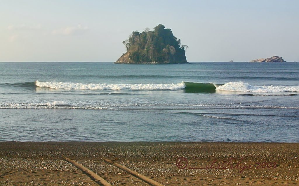 plage-savegre-costa-rica-decouverte