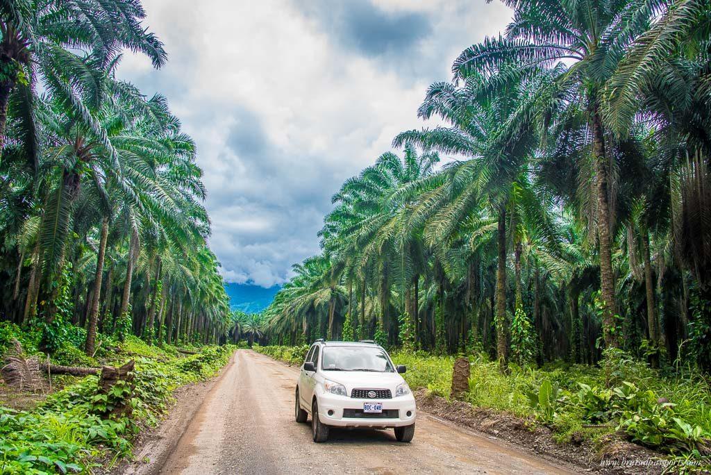 routes-costa-rica-decouverte