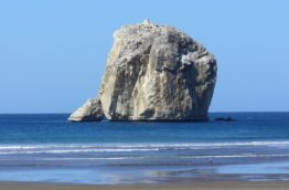 santa-rosa-bruja-guanacaste-costa-rica-decouverte
