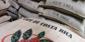 cafe-costa-rica-decouverte