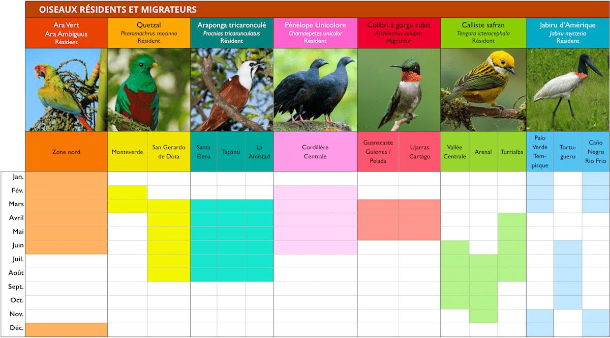 observation-des-oiseaux-ornithologie-costa-rica-calendrier