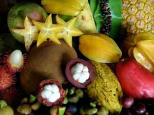 fruits-bio-costa-rica
