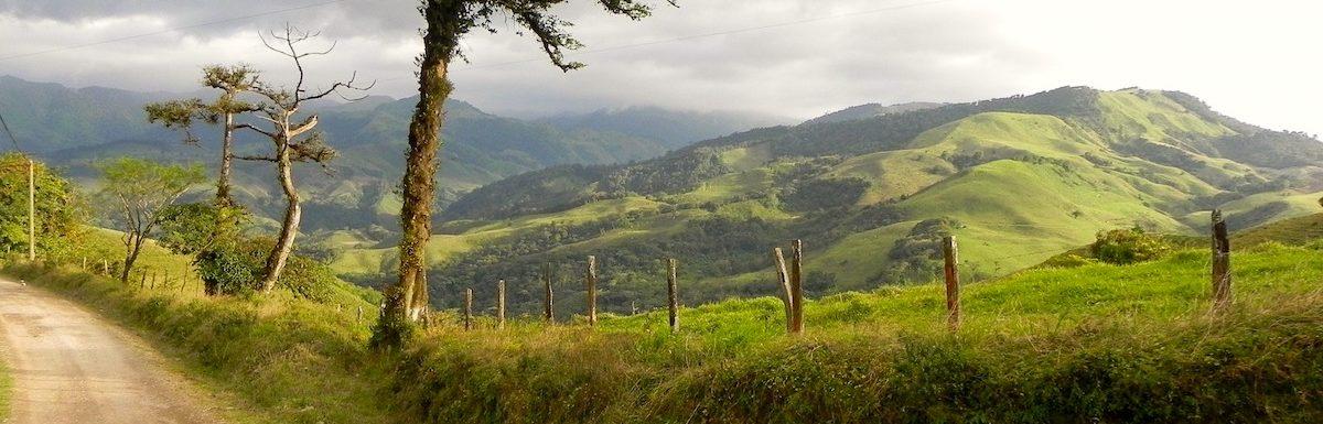 La foret de Monteverde une étape fréquente d'un circuit au Costa rica