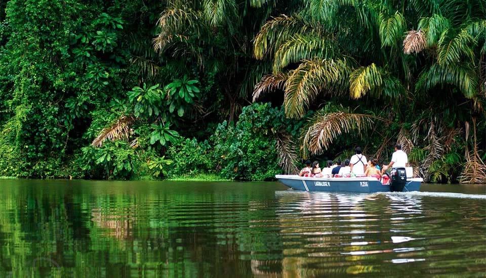 tortuguero-bateau-costa-rica-decouverte