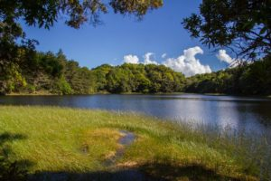 lagunes-don-manuel-costa-rica-decouverte