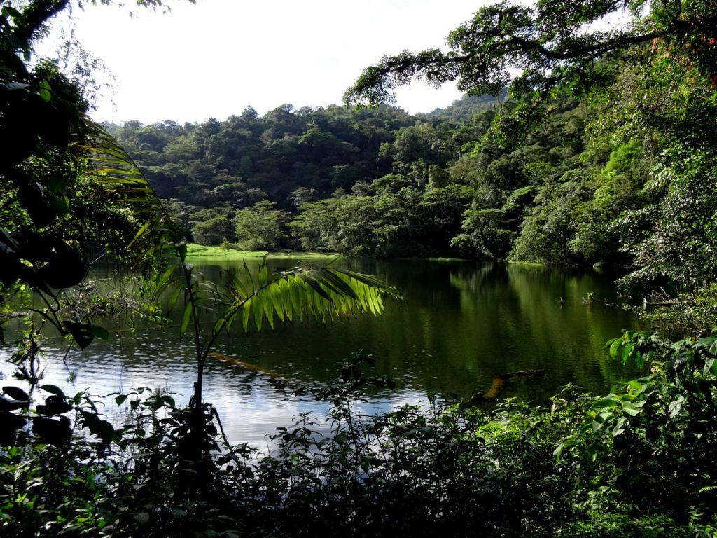 lagunes-pocosol-costa-rica-decouverte