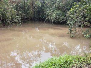 rio-celeste-vert-2-costa-rica-decouverte