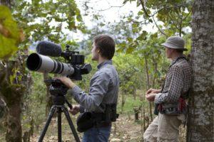 photo-oiseau-costa-rica-decouverte