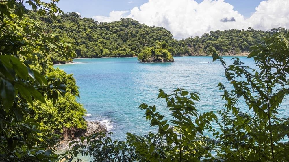 forets-tropicales-manuel-antonio-costa-rica-decouverte