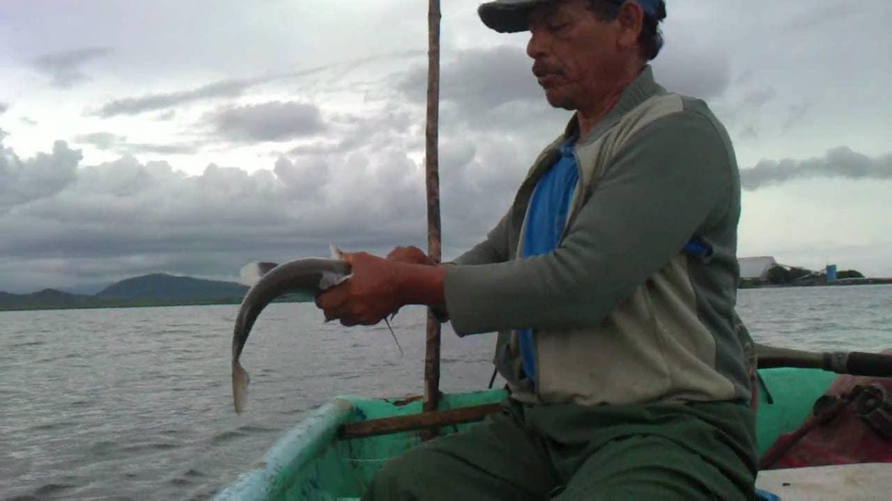 golfe-de-nicoya-peche-costa-rica-decouverte