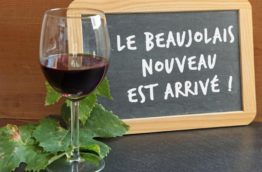 vin-français-beaujolais-costa-rica-decouverte