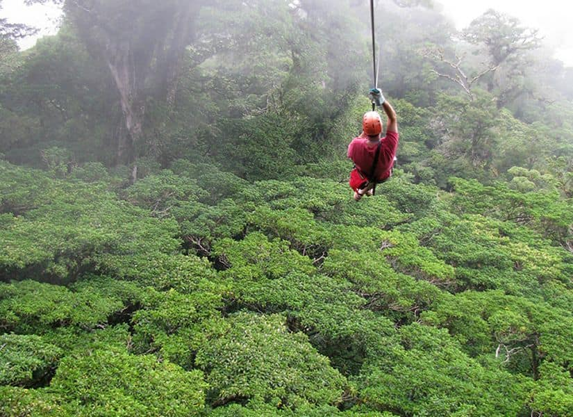 canopy-arenal-costa-rica-decouverte