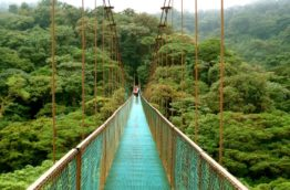 ponts-suspendus-costa-rica-decouverte