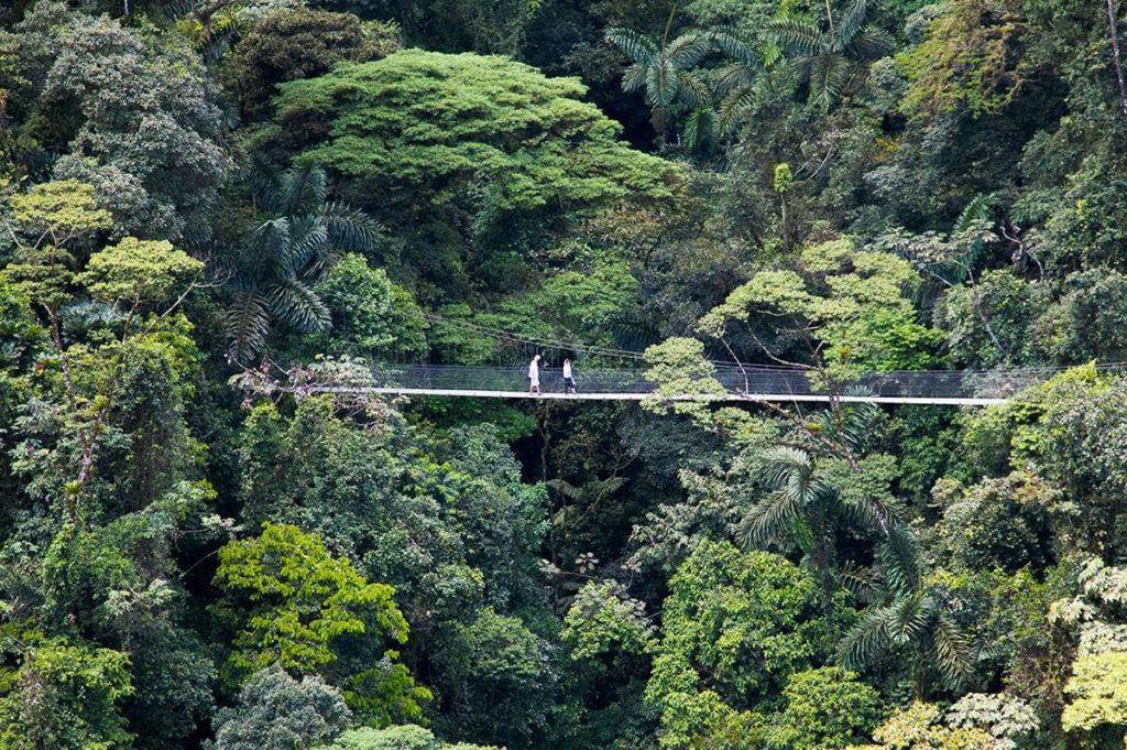 ponts-suspendus-mistico-costa-rica-decouverte