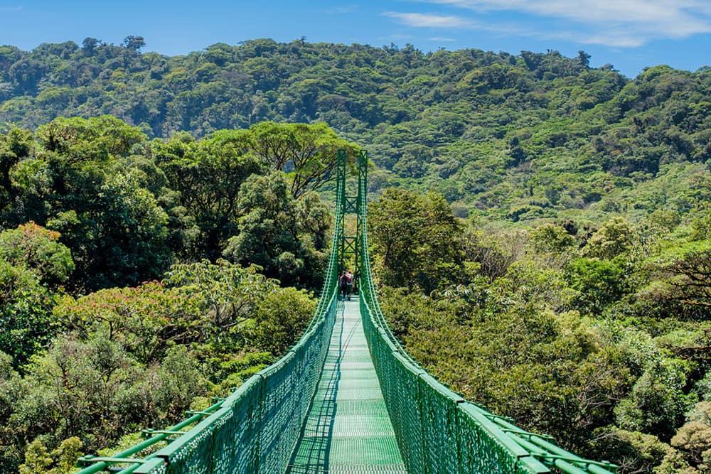 ponts-suspendus-selvatura-costa-rica-decouverte