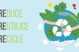 eco-entrepreneurs-recyclage-costa-rica-decouverte