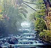 Les sources chaudes du Tabacon, lieu mythique pour une lune de miel au Costa Rica