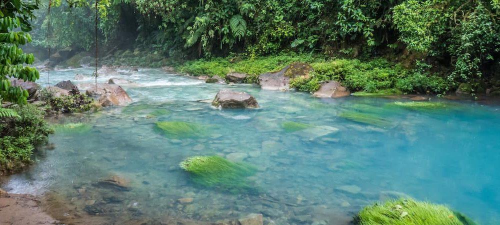 Parc National du volcan Tenorio et son Rio Celeste