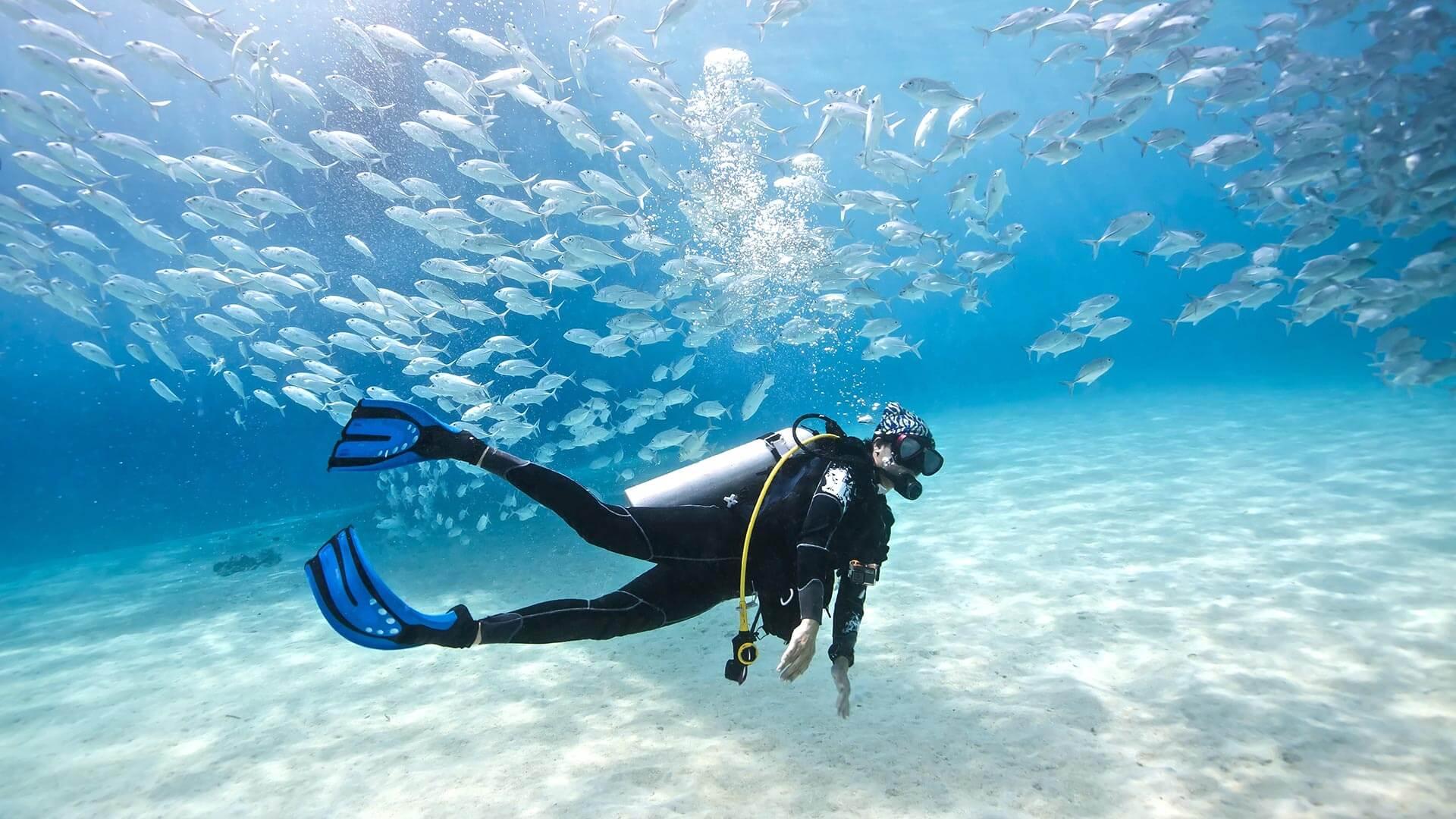 plongee-cover-costa-rica-decouverte