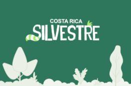 costa-rica-silvestre-cover-costa-rica-decouverte