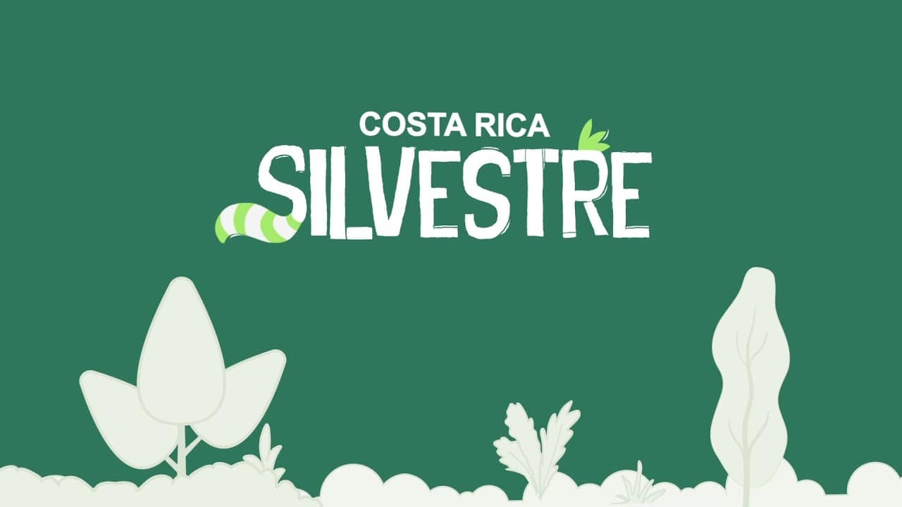 costa-rica-silvestre-cover-costa-rica-decouverte