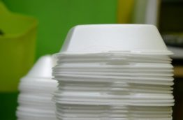 polystyrene-cover-costa-rica-decouverte