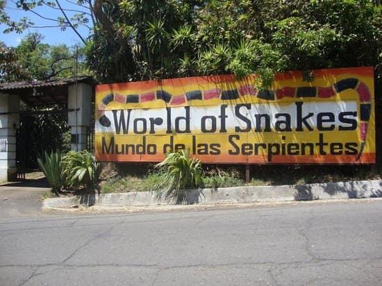 grecia-serpentario-costa-rica-decouverte