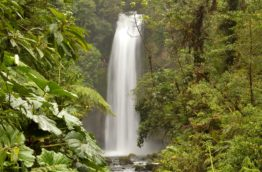 jungle-cascade-costa-rica-decouverte