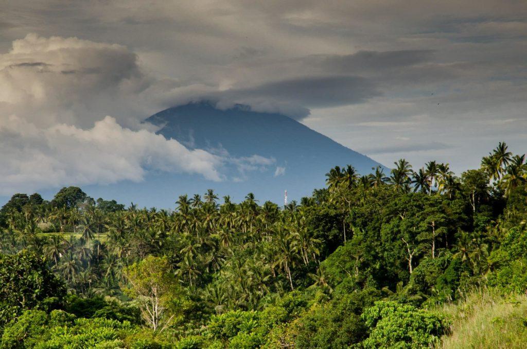 jungle-volcan-costa-rica-decouverte