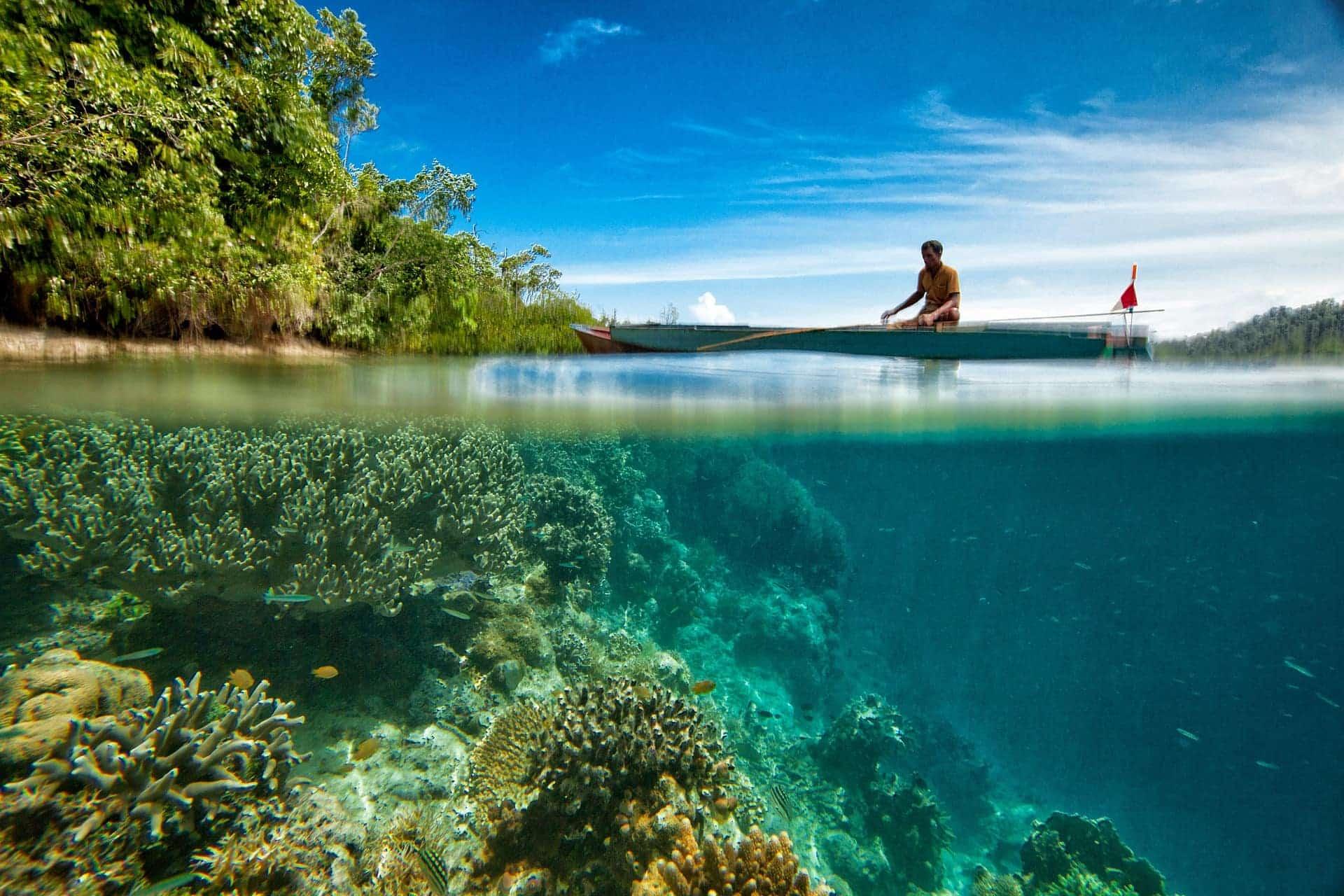 coraux-cover-costa-rica-decouverte